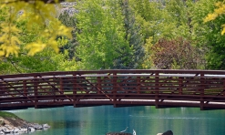 Bridge to New Possiblities