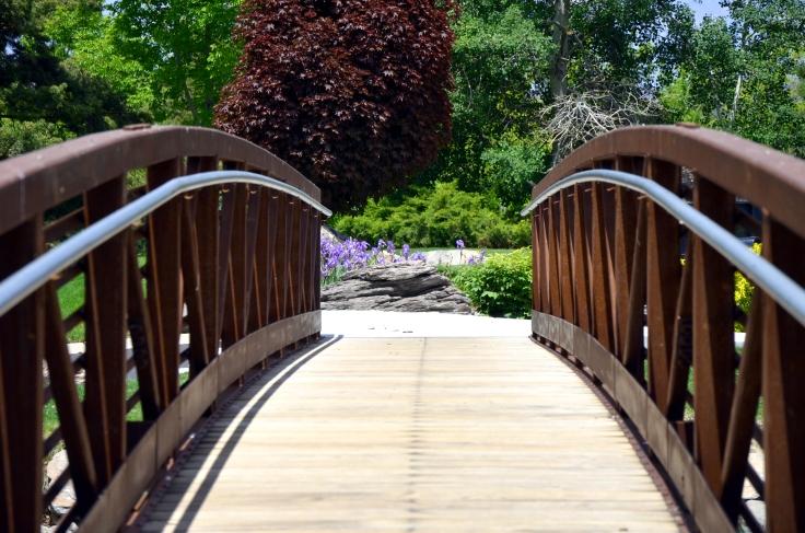 To crossing new bridges! Photo by: Elizabeth Preston