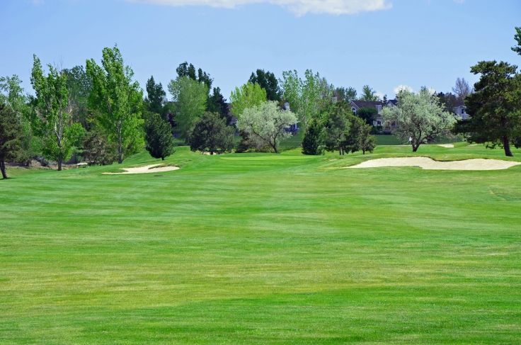 This is one of the golf courses we visited this summer.  Beautiful course! Photo by: Elizabeth Preston
