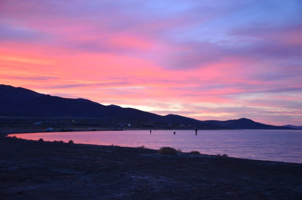 These Pyramid Lake fishermen were fishing from before sunup to after sundown.  Now, that's dedication. Photo By: Elizabeth Preston