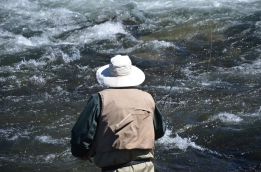 Fly fishing on a river. Photo By: Elizabeth Preston