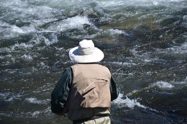 Fly fishing on a river. Photo By: Elizabeth Preston