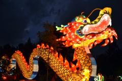 Big Dragon 1