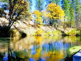 Fall Stream