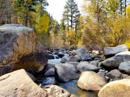 River Balance
