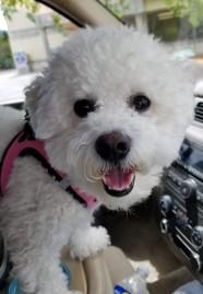 She has the best smile. Photo By: Elizabeth Preston