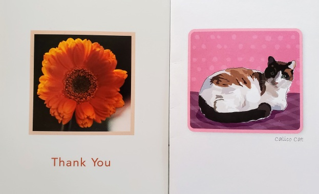 Ms. Roxie Thank You Cards